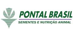 Sementes Pontal Brasil